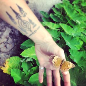 along-w-butterfly
